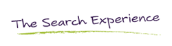 The Search Experience